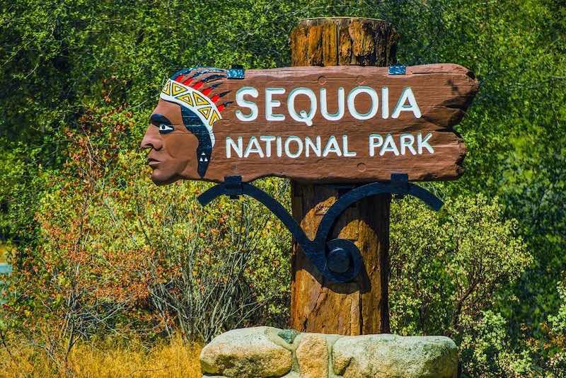 sequoia national park california visita
