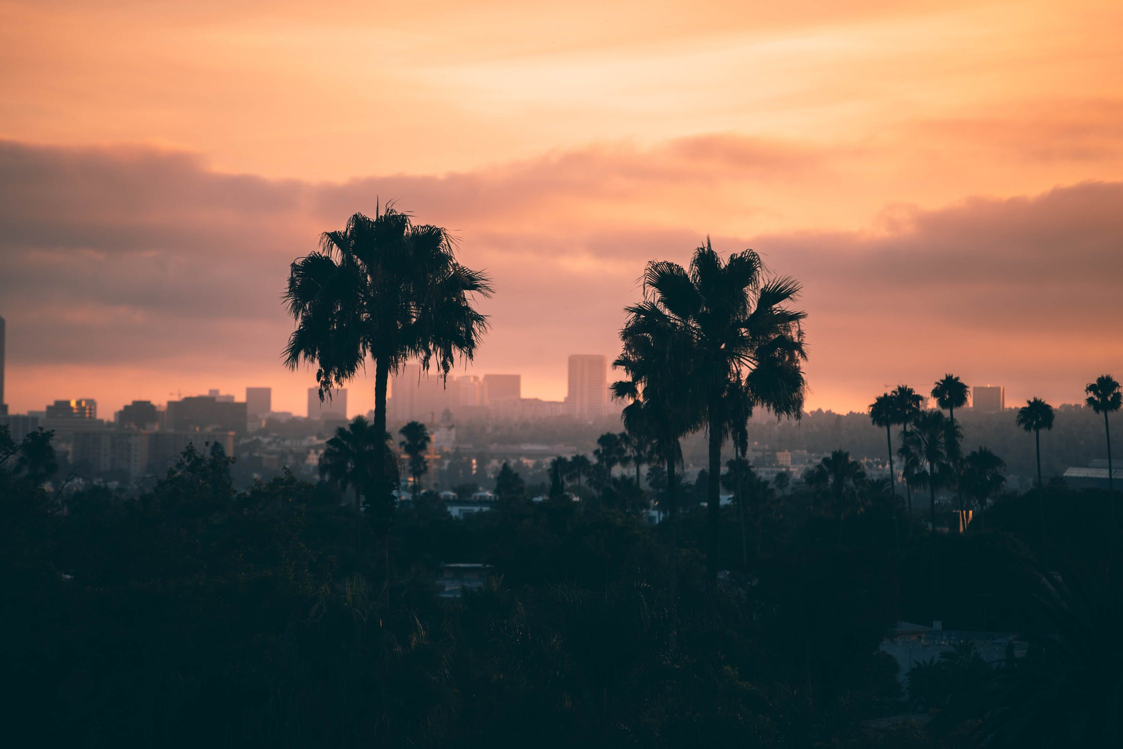 cosa vedere a bel Air a Los Angeles